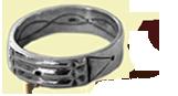 anillo inicio